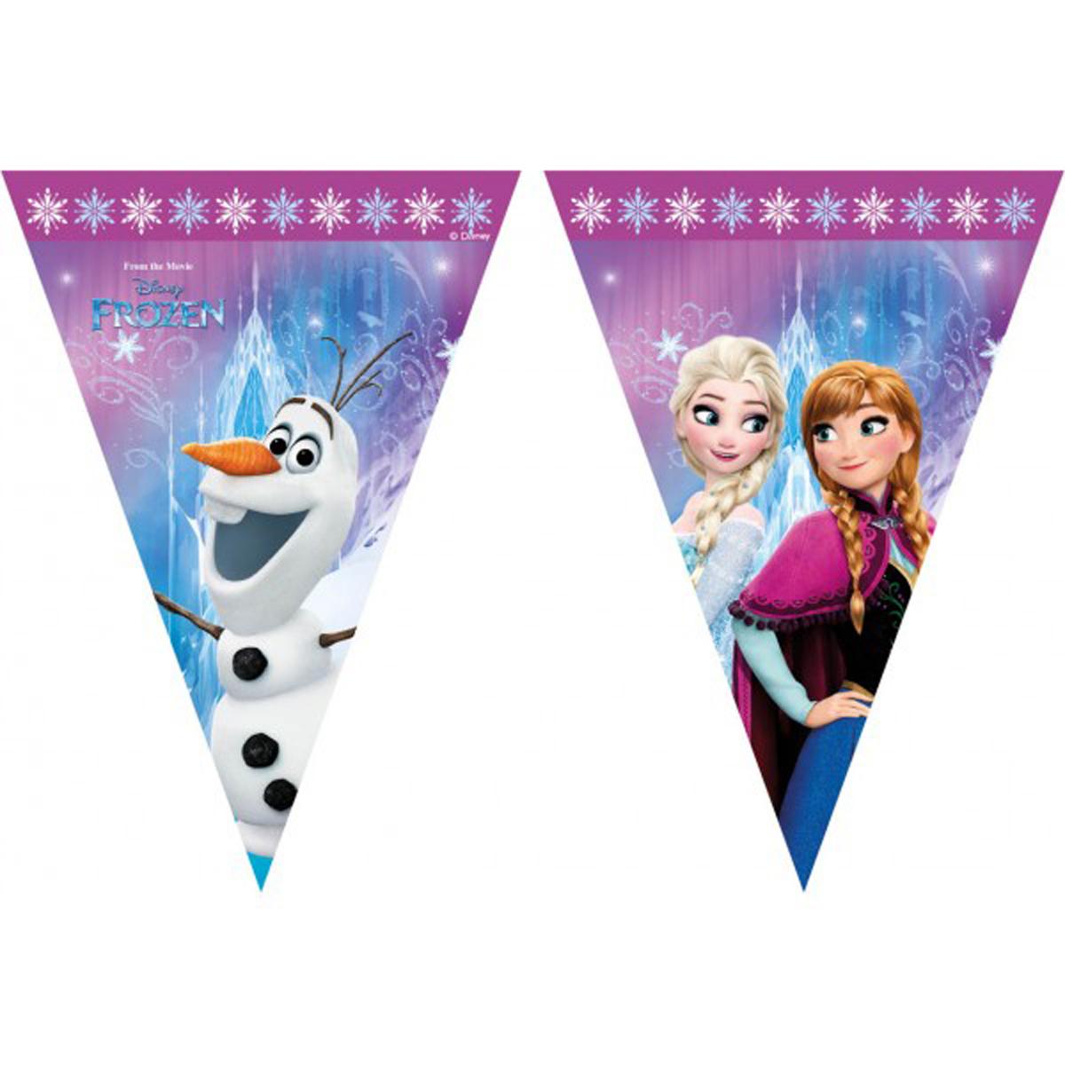 Vlaggenlijn Frozen Lights 2mtr