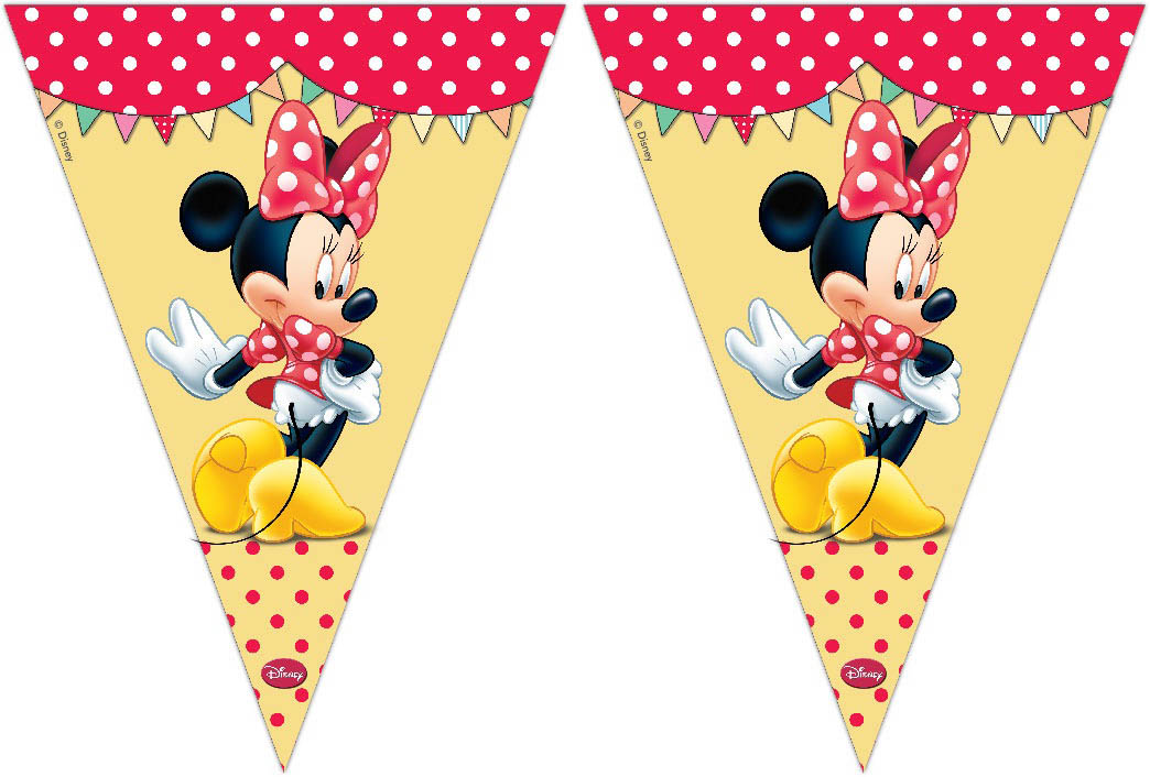 Vlaggenlijn Minnie Mouse 3M